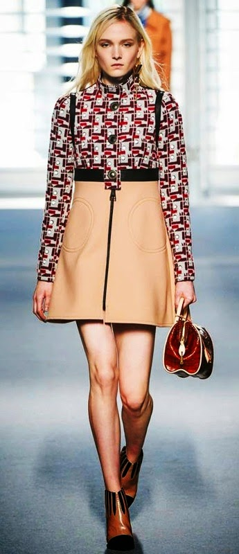 Top 10 Autumn Winter Trends of 2014, Dolce Gabbana, Roberto Cavallini, Loius Vuitton