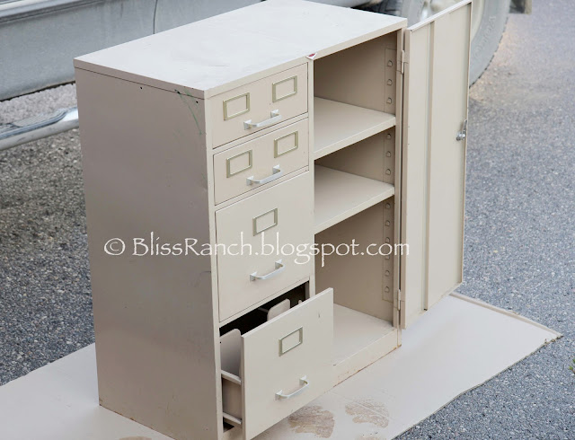 metal file cabinet redo Bliss-Ranch.com