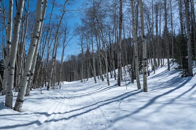 Mill-Castle Trail