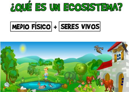 http://catedu.es/chuegos/kono/sexto/t1/eco.swf