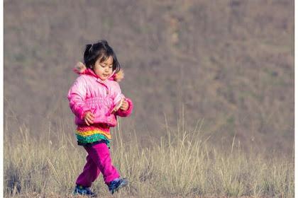 Berjalan Kaki Untuk Menjaga Lingkungan dan Membuat Badan Sehat