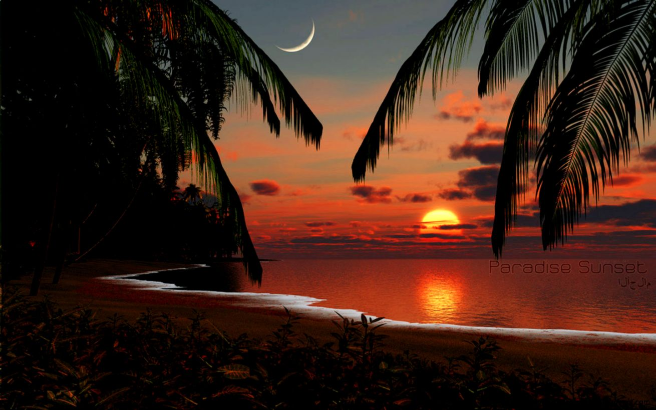Hd Tropical Island Beach Paradise Wallpapers And Backgrounds: Paradise Sunset Wallpaper