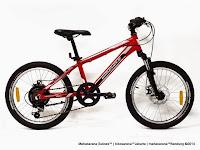 Sepeda Gunung WIMCYCLE ROADTECH DX 20 Inci