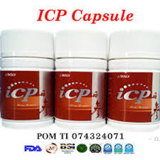 ICP Capsule obat herbal Diabetes
