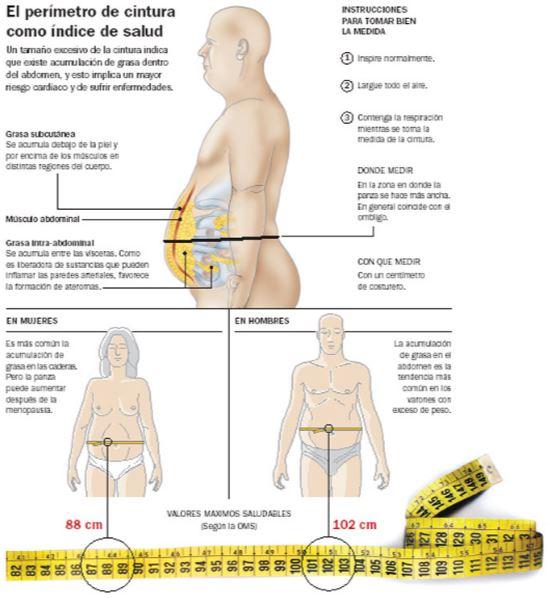 perder grasa del vientre para los hombres