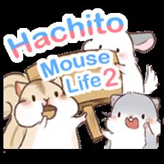 Hachito Mouse Life_2
