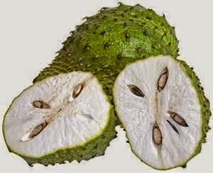 Buah merupakan salah satu masakan yang mempunyai banyak vitamin dan juga kandung gizi lainn Manfaat Buah Sirsak untuk Kolestrol