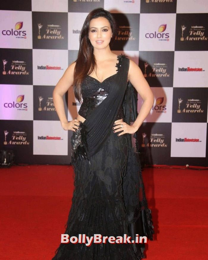 Sana Khan, Pics on Red Carpet of 13th Indian Telly Awards 2014