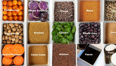 peruvian-superfoods-enter-indian-market