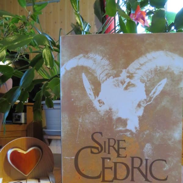 Du feu de l'enfer de Sire Cédric