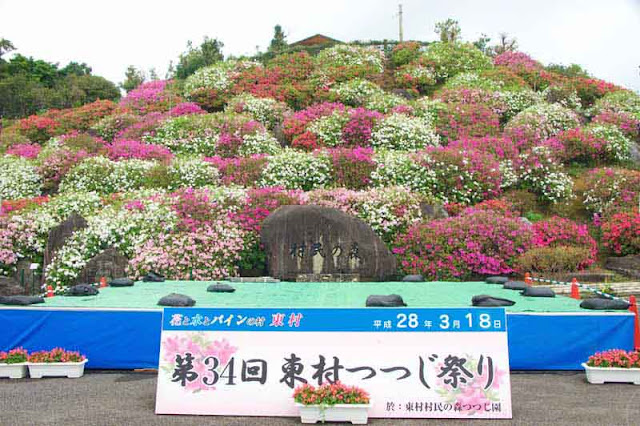 stage, sign, hillside, azelea, flowers