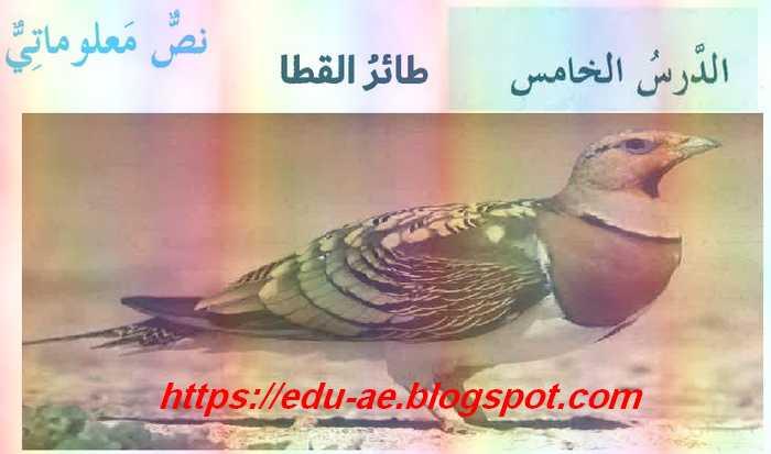 حل درس طائر القطا مادة اللغة العربية للصف السابع فصل ثانى 2020- موقع تعليم الامارات