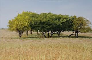 vistas-naturaleza-pinturas