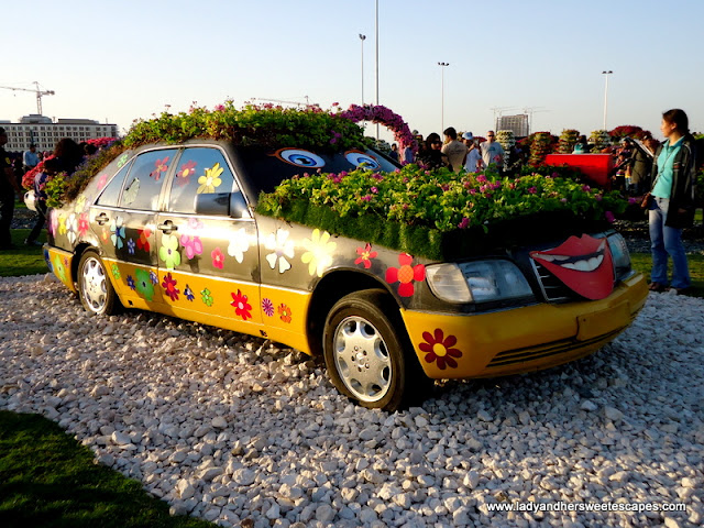 car at Dubai Miracle Garden