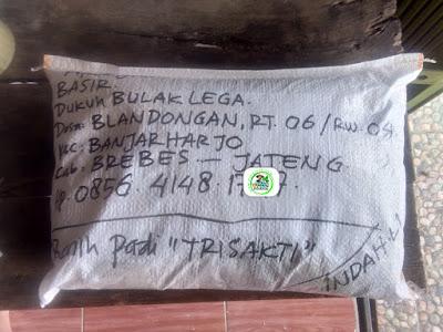Benih pesanan BASIR Brebes, Jateng   (Sesudah Packing)