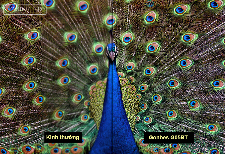 Gonbes G05-BT