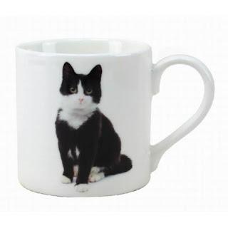 Cana cu pisicuta neagra cu alb