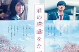 Let Me Eat Your Pancreas / Kimi no Suizo wo Tabetai / 君の膵臓をたべたい (2017) - Japanese Movie