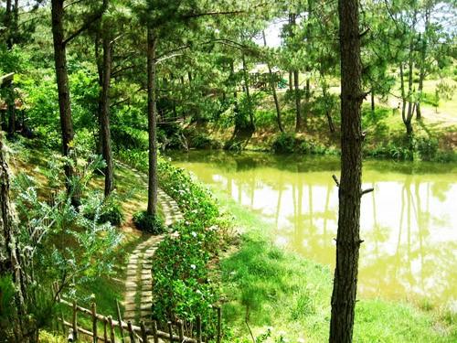 Hình ảnh con đường mòn đi vô trung tâm thung lũng Vàng, Đà Lạt