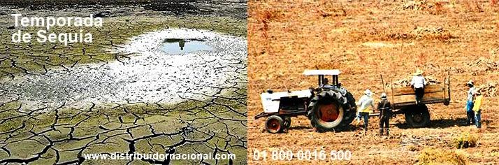 Soluciones para Sequía