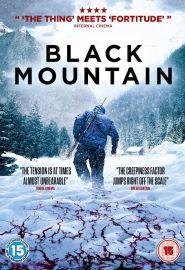 Black Mountain Side (2014)