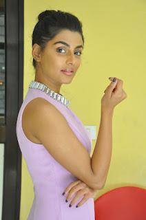 anisha ambrose okkadu migiladu interview stills 09