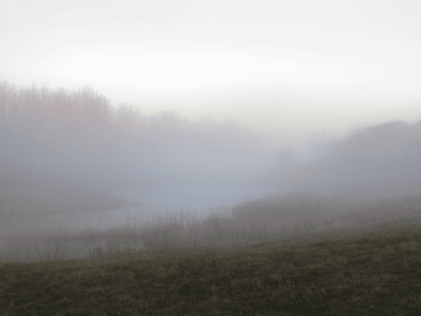 Steven d foster photographs the departing landscape website image 4 creation early morning january 21 2017 looking north over the meadows north pond the houses on the right are shrouded in fog biocorpaavc