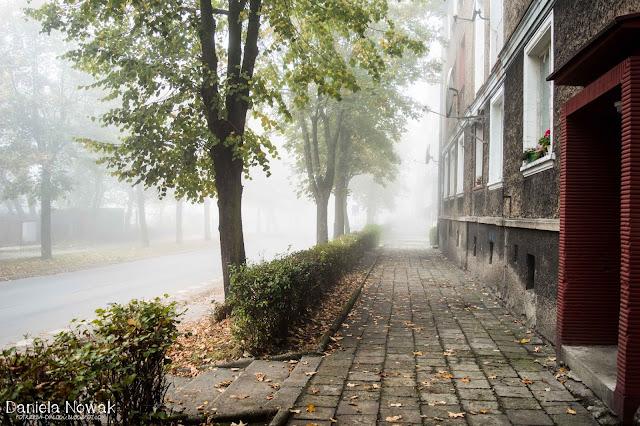 mgła może i ogranicza widok, ale uwidacznia piękno..