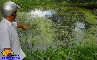 Công ty tư vấn xử lý nước thải nhà máy chế biến thủy hải sản - Nguy cơ suy thoái môi trường