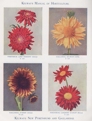 The lost plants of the Victorian golden age