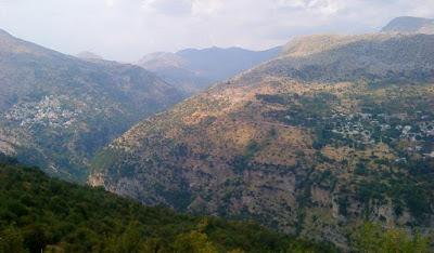 Ένοπλοι Αλβανοί μάζευαν τσάι στα Τζουμέρκα και συνελήφθησαν από την ΕΛΑΣ