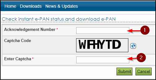 Download PAN Card By PAN Number
