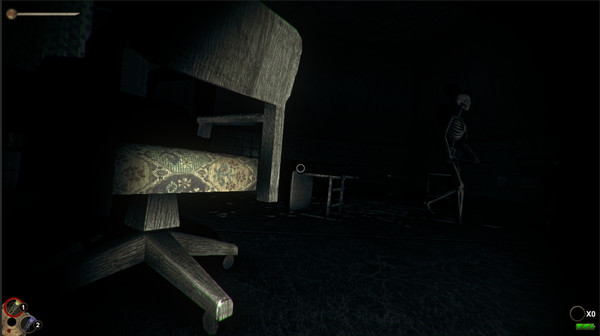 Horror in the Asylum PC Game