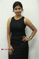 Palli Paruvathile Movie Press Meet  0009.jpg