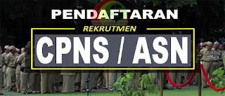 Pendaftaran PPPK CPNS 2019 di SSCN.BKN.GO.ID