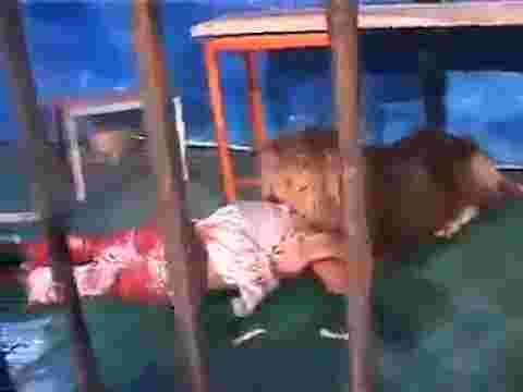 مقطع فيديو مؤلم اسد يهاجم مدربه ويقتله