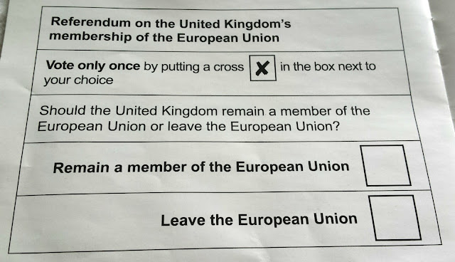 EU Referendum. How to Vote.