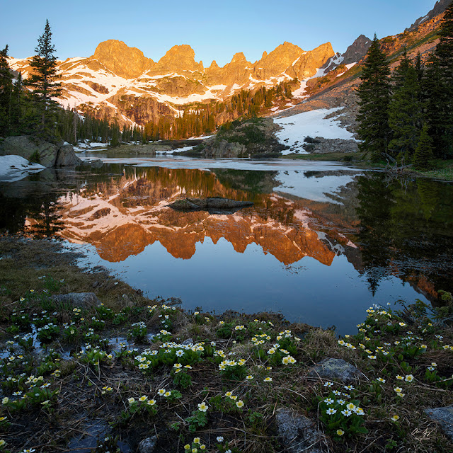 sunrise on willow lake with wildflowers and the Zodiac Ridge in alpenglow near Silverthorne, Colorado