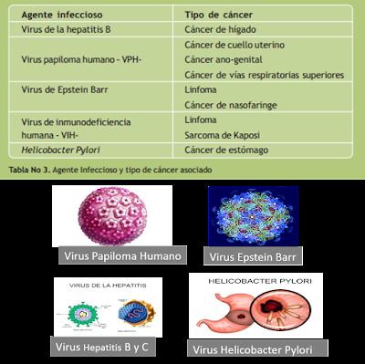 Principales agentes infecciosos probados como cancerígenos