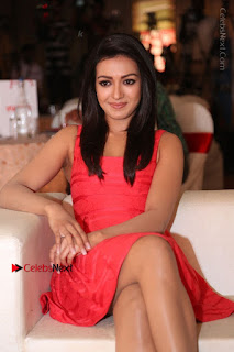 Actress Catherine Tresa Unveils Intex Air Conditioners  0097.jpg