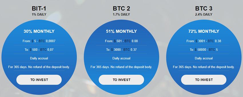 bitcoinvest hyip