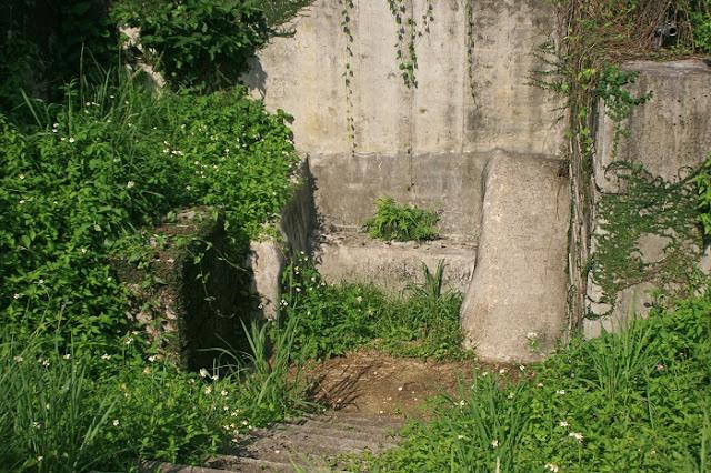 ウキンガー(ウケンガー)の写真