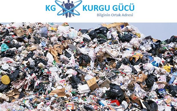 Çöplükte Çıkan Plastik Yiyen Mantar Türü Plastik Kirliliğine Çözüm Olabilir - Kurgu Gücü