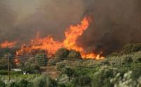 Οι φλόγες πλησιάζουν σπίτια στη Ζάκυνθο