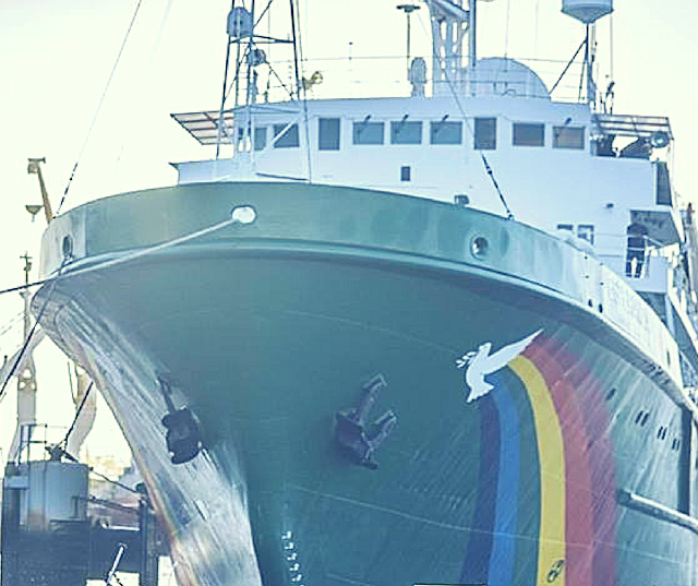 Arrival-of-the-Greenpeace-Ship-Esperanza-to-Cameroon