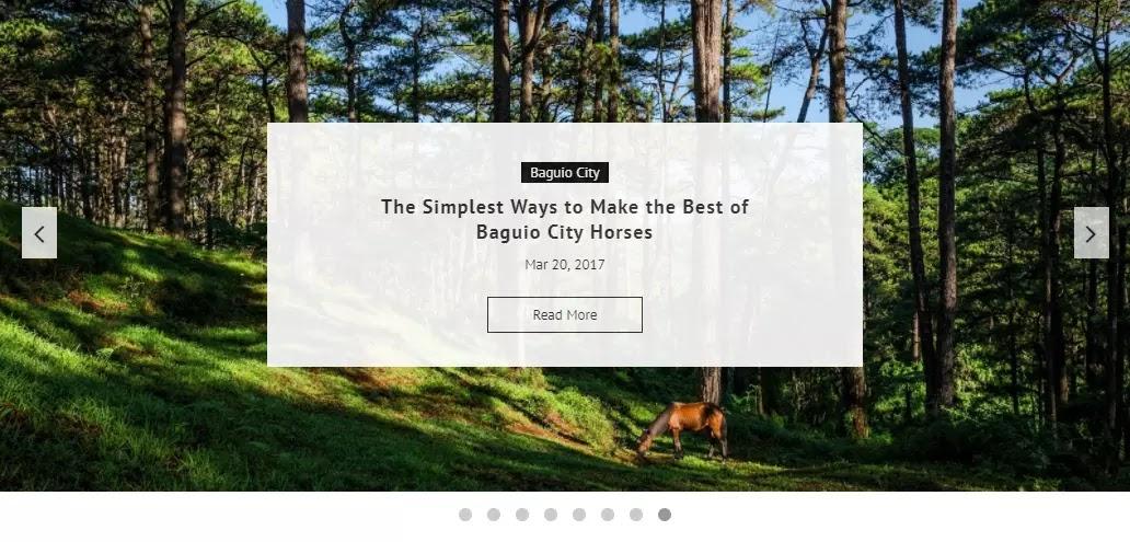 AvianQuest.Com New Minimalist Template Slider