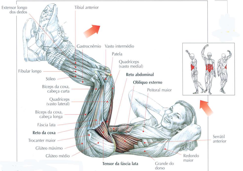Justva exerc cio abdominal reto 90 for Exercicio para interno de coxa