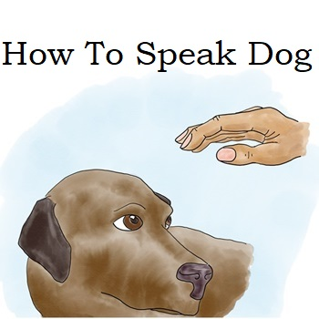 New Post: How To Speak Dog!