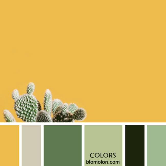 variedad_en_color_paletas_colores_2b