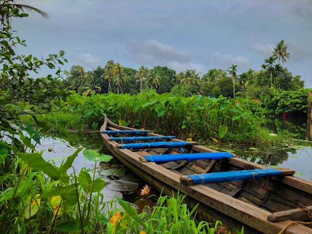 backwaters tour vaikom cochin kerela photo